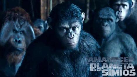 el-amanecer-del-planeta-de-los-simios (1)
