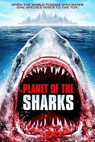 planeta-tiburones_zm9d