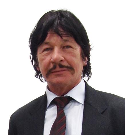 Mister Bronzi 2
