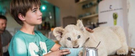 Mia y el león blanco-5