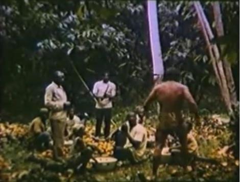 Tarzán y el tesoro Kawana-5