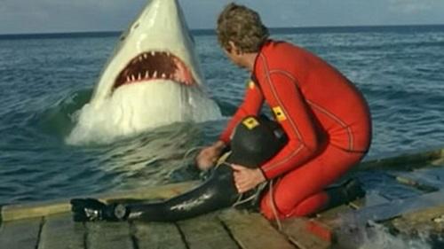 Tiburón 3-8